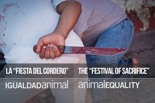 """La """"Fiesta del cordero"""""""