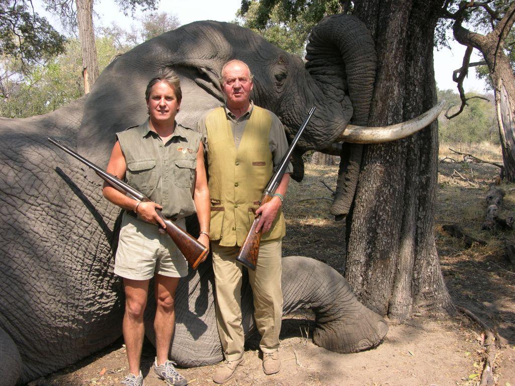Rey Juan Carlos junto a elefante abatido