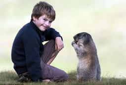 Cuatro años de amistad entre un niño y una colonia de marmotas (fotos increíbles) Marmotas_alpes