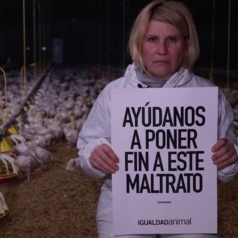 Cada año, sacamos a la luz lo que la industria de la carne esconde.